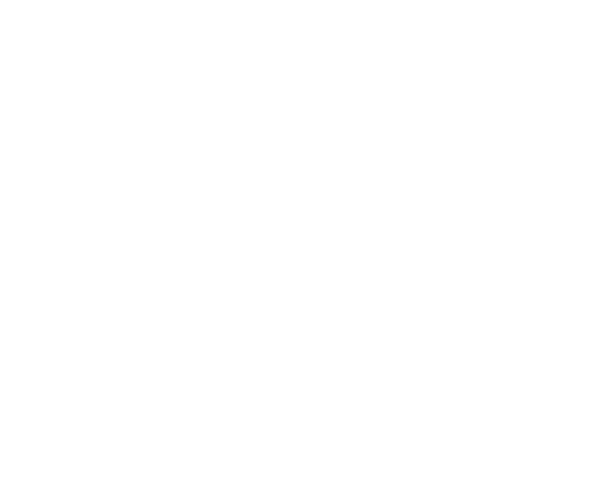 Der Start-up Gewinner: Peaceful Delicious